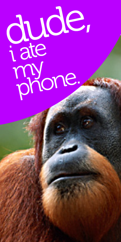 Are you afraid of being away from your phone? #WDS #tether